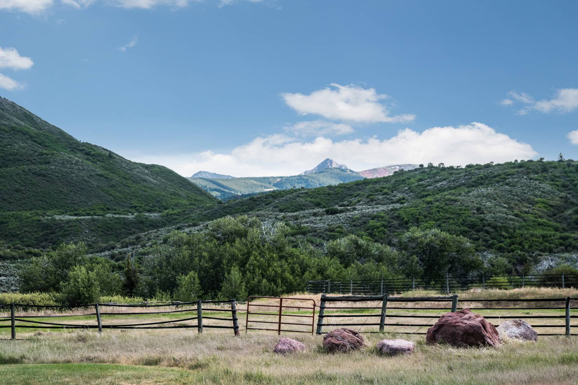 1151 Capitol Creek Road Snowmass Photo 29