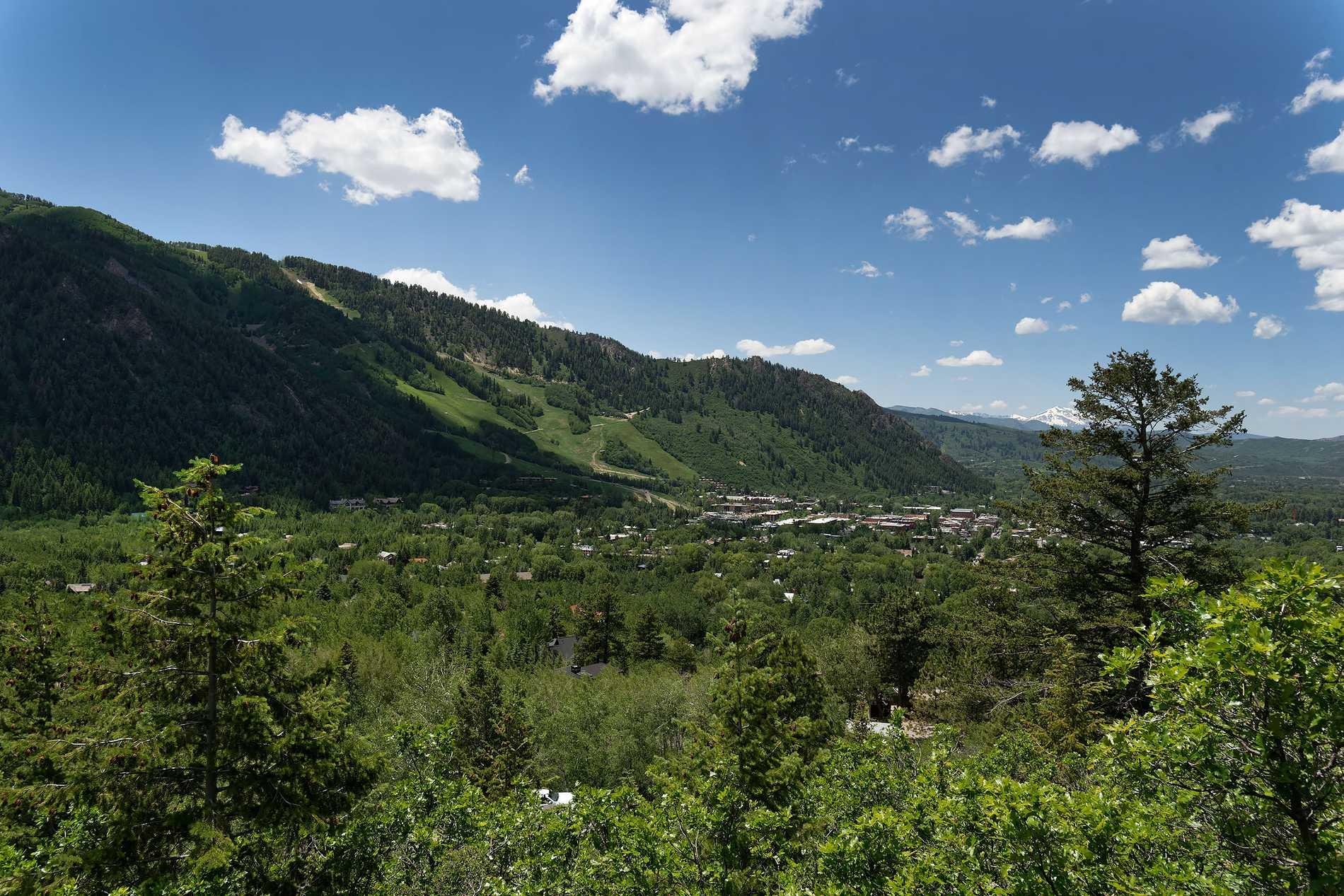 813 McSkimming Road Aspen Photo 2