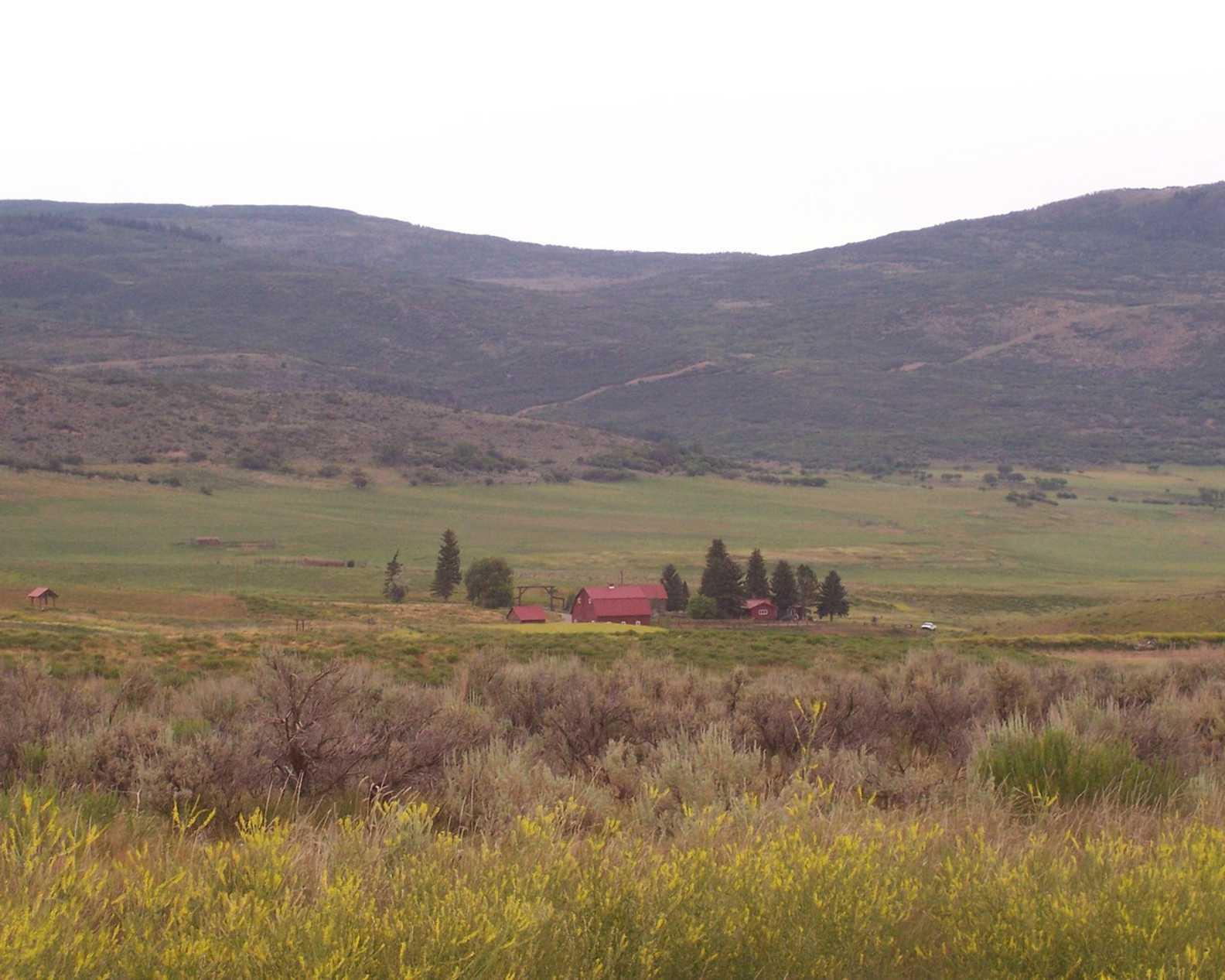Tbd Cattle Creek Ridge Road Lot 16 Carbondale Photo 5
