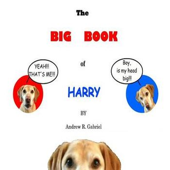 BIG BOOK OF HARRY