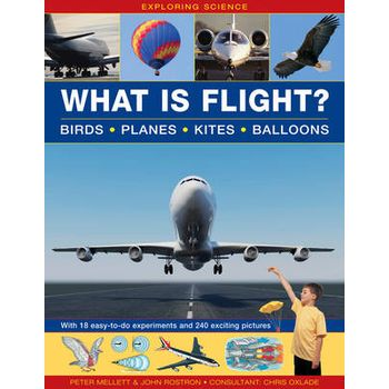 EXPLORING SCIENCE: WHAT IS FLIGHT?: BIRD
