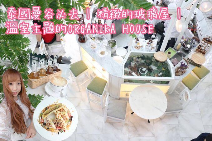 泰國曼谷必去 | 精緻的玻璃屋 | 溫室主題的ORGANIKA HOUSE