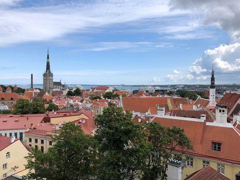 [愛沙尼亞景點] 兩小時跨國遊 坐郵輪由芬蘭去愛沙尼亞 一日快閃塔林古城