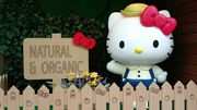 全球首間Hello Kitty綠色及有機零售店現已開幕 Hello Kitty Green Living...