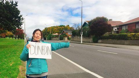 【紐西蘭】教你三步驟,如何在紐西蘭搭便車