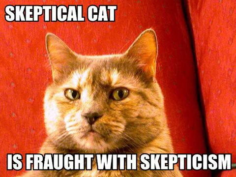 [Image: skepticat.jpg]