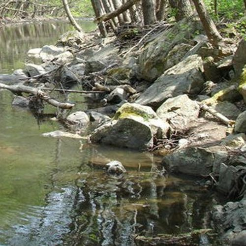 WWF: В България вече няма живи реки