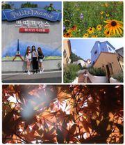 情侶、閨蜜都啱玩!韓國Local Tour 丨首爾郊外遊 ( 南怡島、小法國、 Rai...