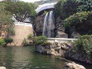 【城中慢活遊】寸土之間的綠色天地 紅棉路上的香港公園