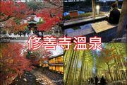 修善寺溫泉 日本第一紅葉美景 竹林小徑 免費泡腳溫泉 千年古湯