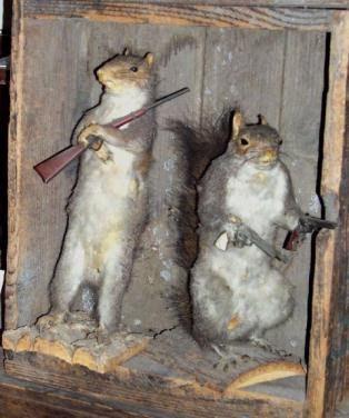 [Image: _squirrels%2520with%2520guns.jpg]