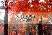 [2015*秋季韓國自由行]*首爾旅遊~【七天六夜行程表】