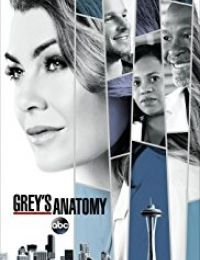 Grey's Anatomy 14 | Bmovies