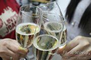 【飲食】DECO WINES 小貓氣泡酒 Cuvée MEOW