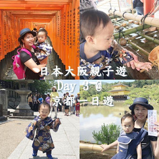 【2017❤旅遊】 夏之遊✈️大阪 ♬ 京都巴士一天團(金閣寺及嵐山)