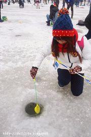 [韓國玩樂]。第五屆加平海龜島冬季慶典。充滿回憶的冰魚體驗