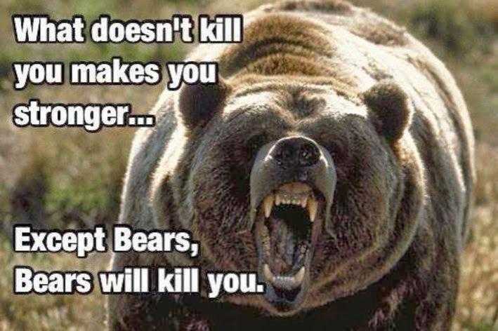 [Image: bears_will_kill_you..jpg]