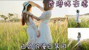 香港好去處 |白色浪漫白茅田 |打鼓嶺坪洋 (附路線地圖、影片教學)