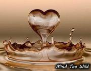 愛情寓意故事 [轉貼] - 杯和水的愛情故事