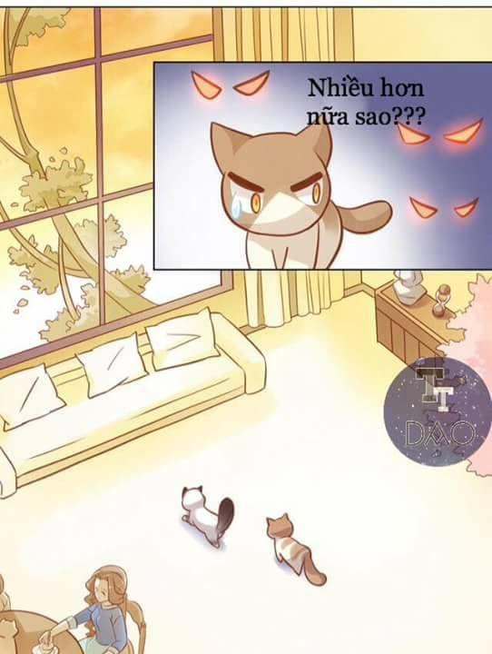 Dưới Móng Vuốt Mèo Chap 8