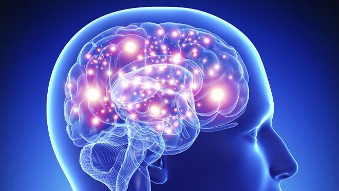 [Image: 7-keajaiban-otak-kanan-dan-otak-kiri-manusia.jpg]