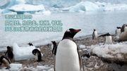 【雪兒講座】阿根廷、烏拉圭、南極、智利,37天39萬帶爸爸的極難冒險