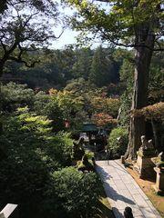 【隨筆】日本旅遊心得