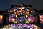 京都 世界遺產 二条城唐門光雕投影 CG影像呈現櫻花繽紛盛開的情景