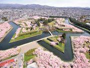 北海道地標 五稜郭 五稜郭塔 Goryokaku Tower 四季美景