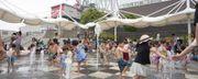 刈谷高速公路綠洲 綜合設施 大型摩天輪 兒童小汽車 小型遊樂園 深受親...