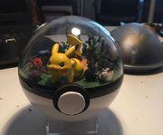 【Pokémon 趣聞】活在球內的小精靈原來是這樣的?