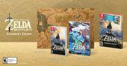 Zelda Explorer's Edition推出!(11/19-25)(下)