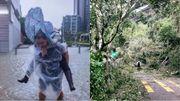 【多圖】經歷完超強颱風「山竹」嘅香港,打工仔鬧爆政府攞市民條命較...