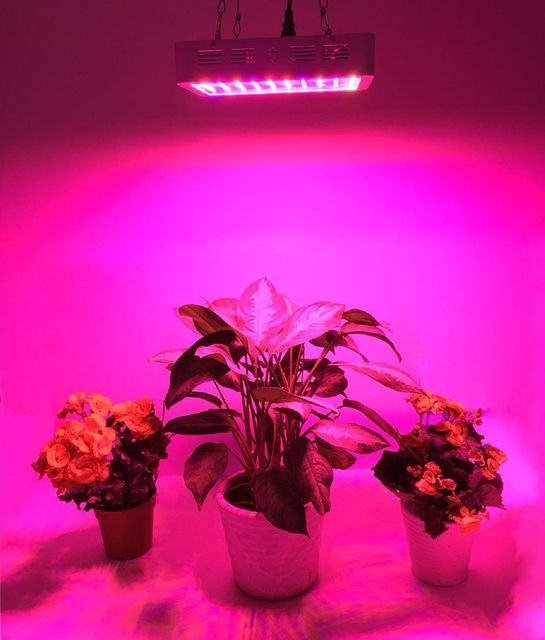 BESTVA 300W 600W 800W 1000W 1200W 1600W High Yield Full Spectrum LED grow light for plants grow and flower