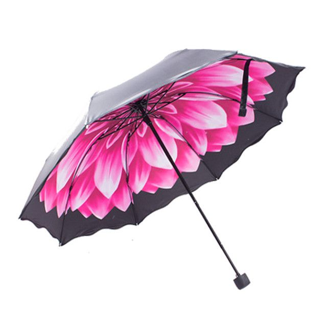 Women Lace Umbrella Excellent Sun Umbrella Travel Windproof Paraguas Black Coating 4 Colors Daisy Print Umbrellas