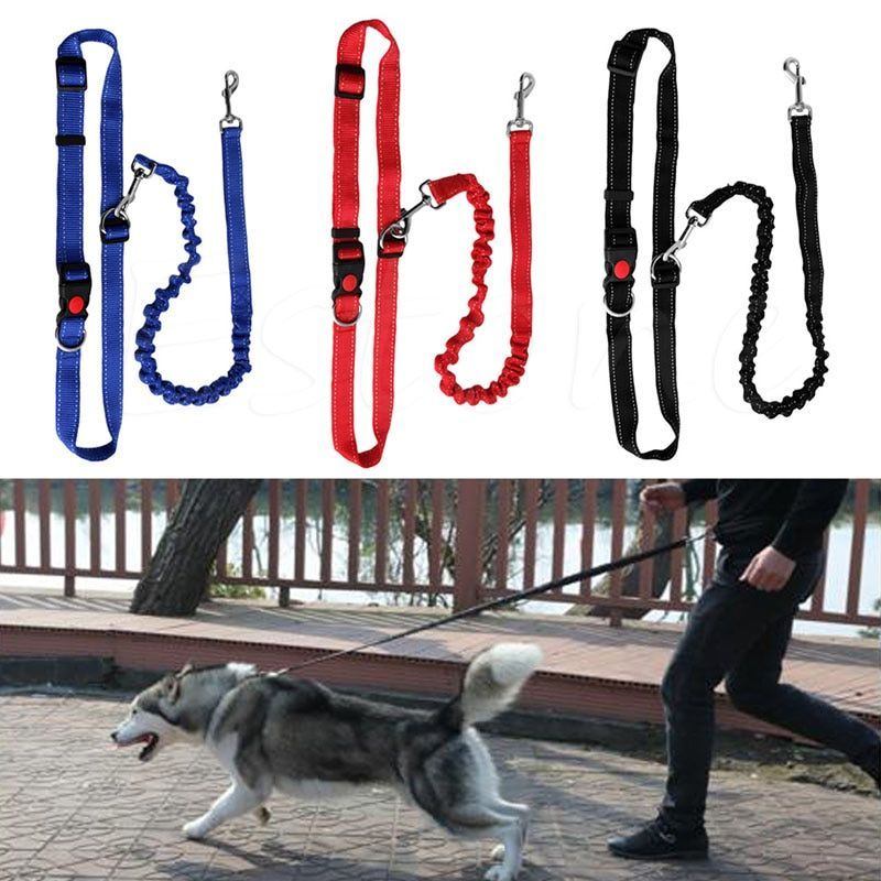 Hot Hands Free Running Dog Leash Bungee Buffer Rope Stitch for Jogging Walking Hiking