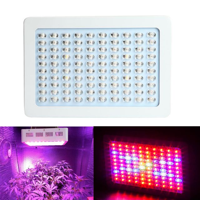 300W Dimmable LED Grow Light Panel Indoor Plant Lamp Epiled Led Flower Plant Greenhouse Hydroponics horticulture System
