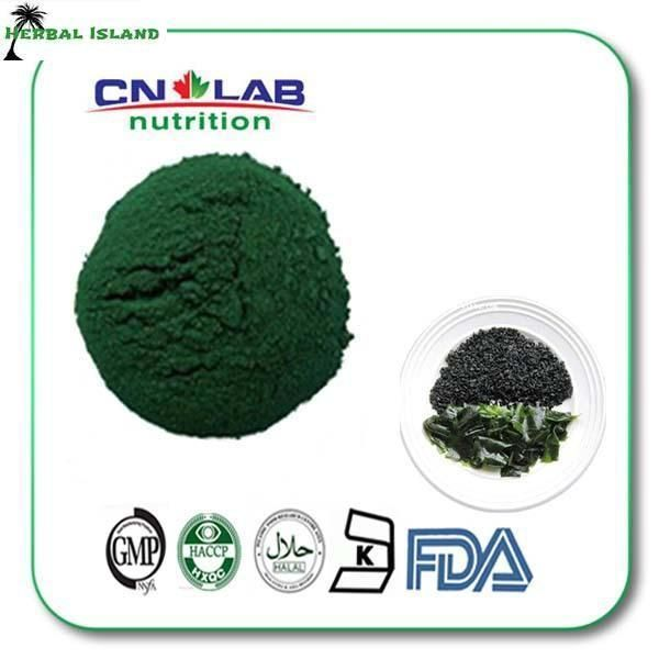 Free Shipping Top quality organic and wholesale spirulina powder 800G/BAG Rich in Fe