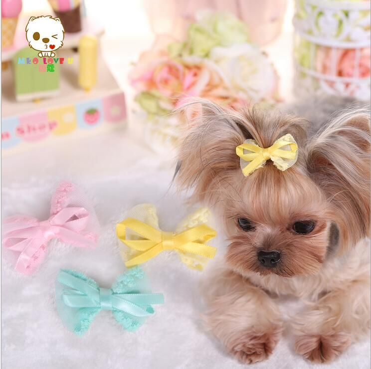 , 4-5cm Cute Pet  Dog Hair Clips,Classic Pet Cats And Dog BeeHairpin Headdress Pet Grooming Accessories