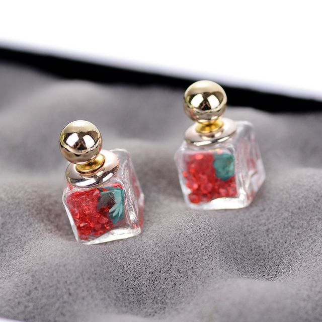 Glass Bottle Earrings Square Glass Equipped with Bright Colors Crystal Ball Zircon Dry Flower Glass Double Faced Female Earring