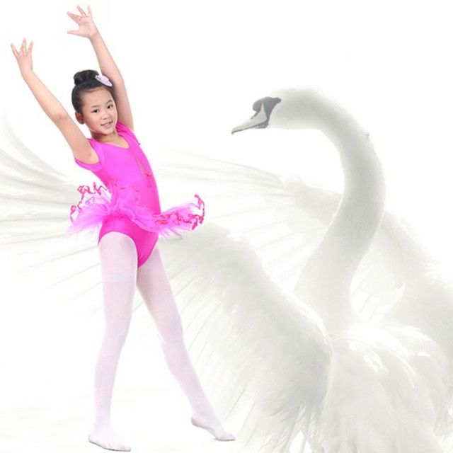 Zehui 3-7Y Child Girls Traning Gymnastics Ballet Tutu Leotard Short Sleeve Dance Dress