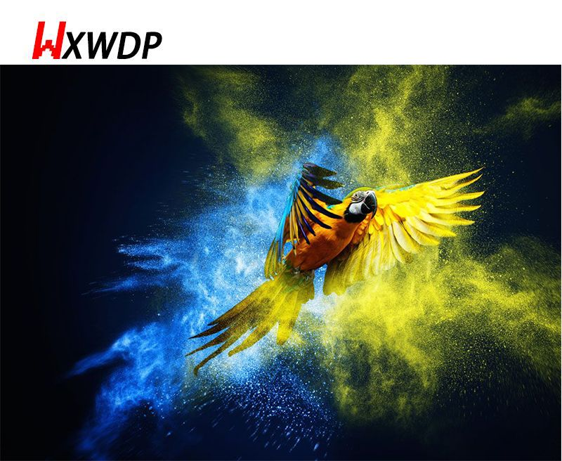 2017 Colorful Bird 5D DIY Diamond Painting Full Square Rhinestone Drill Needlework Pasted Embroidery Pattern 3D Cross WXWDP