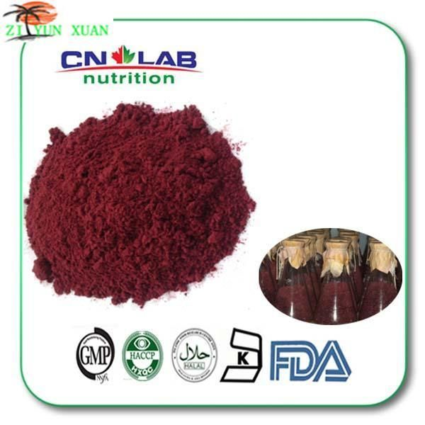 high quality red yeast rice extract/red yeast rice powder made in china