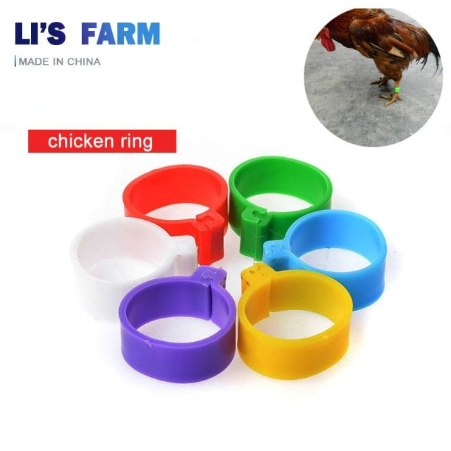 100 PCS Color Foot Bird Management Logo Chicken Quail Ring Animal Feeding