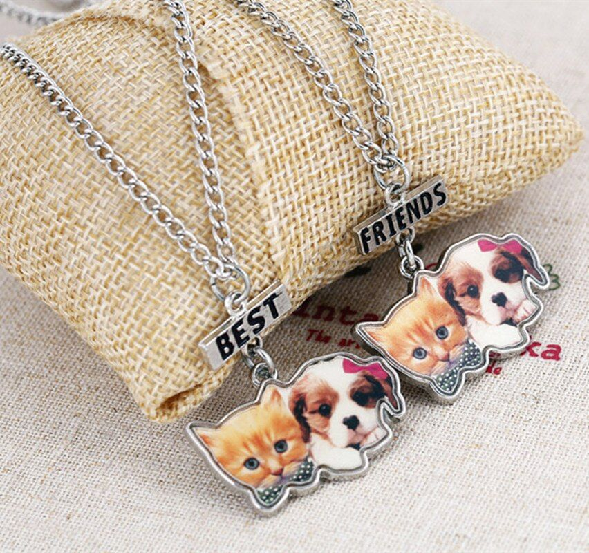 Kids jewelry children  epoxy print enamel cute bog and cat best friends BFF necklace bead chain pendant charm lead free