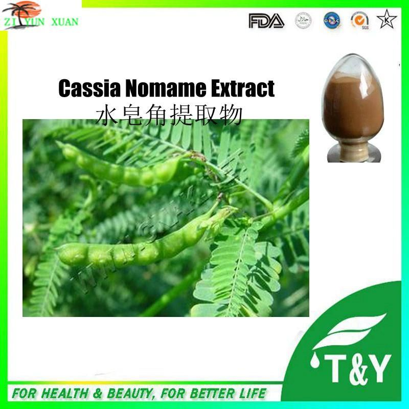 NSF-cGMP Health Care Product Natural Dimer Flavors Cassia Nomame Extract 800g/lot