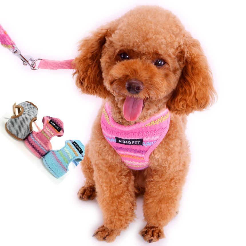New Dog Harness Mesh Rainbow with Lead Leash For Pet Puppy Blue/Pink/Gray XS/S/M/L  AB1013 Chihuahua  Cat Small Animals Products