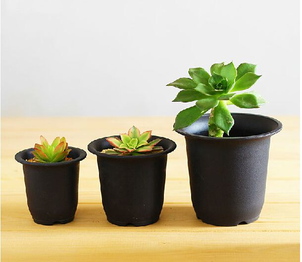 10pcs/lot,black flowerpot,Plastic basin fleshier plant cactus black scrub basin,wholesale,garden supplies