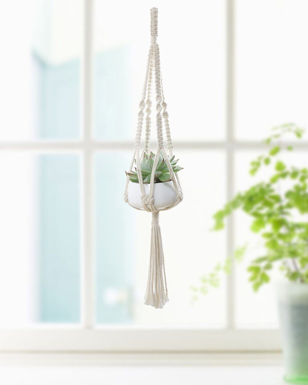Mini Hanging Macrame Plant Hanger Planter Holder with Garden Succulent Pot for Indoor Outdoor Decoration, Cotton, 19 Inch(48cm)