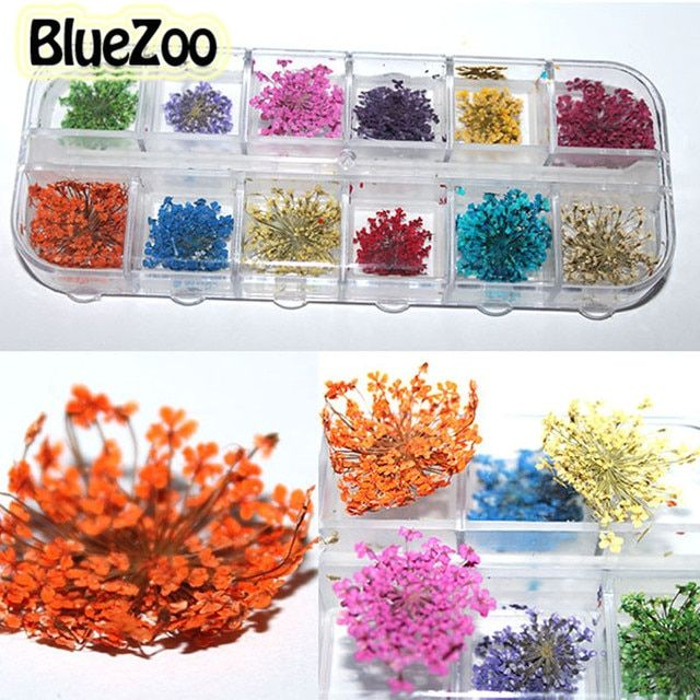 BlueZoo Dry Flower Nail Art Real Nail Art Dried Flowers Nail Art Decorations Floral Manicure Floral Stickers Nail Rhinestone